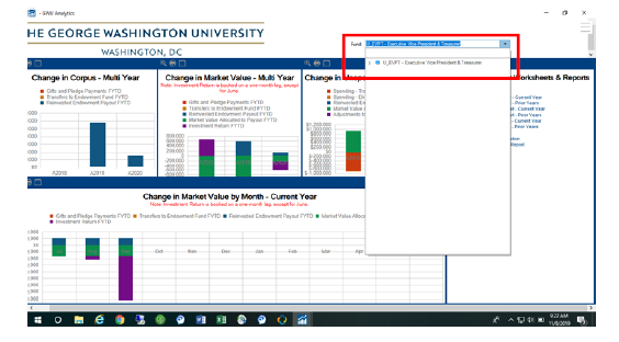 Reviewing dashboard panel for single endowment fund screenshot